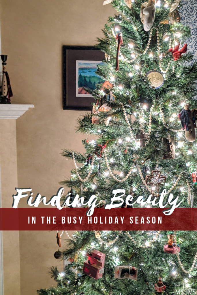 Finding Beauty during the busy Christmas season